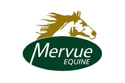 Logo_Mervue kopie